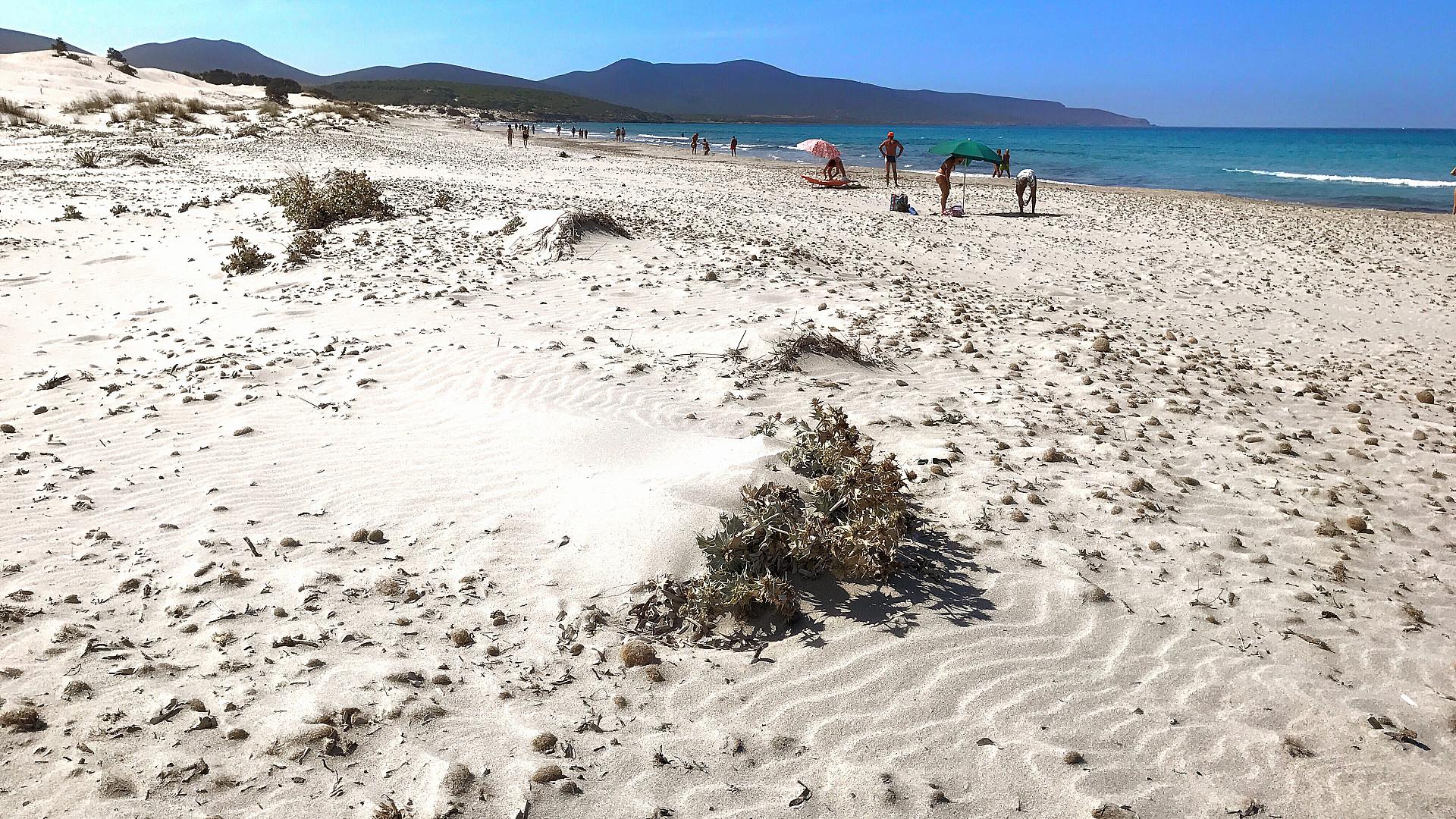 Dune is Arenas Biancas